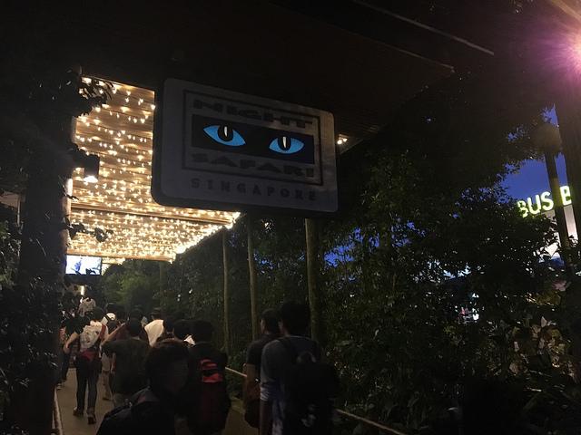 ナイトサファリ。下を歩くのは修学旅行らしき日本の学生たち。