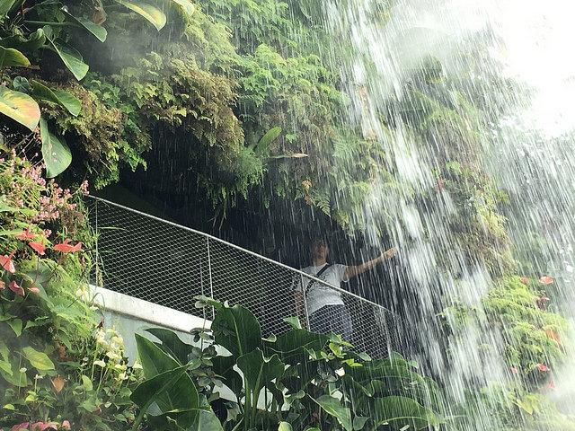 山の中から滝に手を伸ばしてみたり