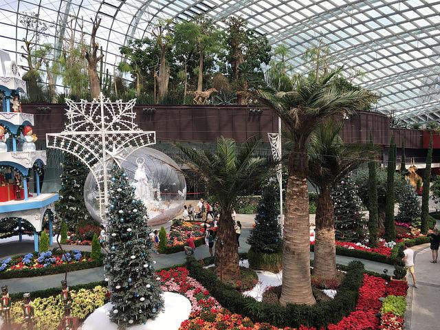 とても華やかな植物園