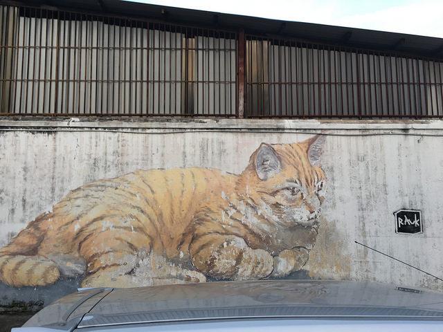 猫壁画眼福